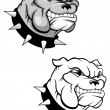 Bulldog mascot — Stock Vector #3386169