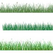 Green grass patterns — Stock Vector