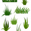 Stock Vector: Green grass patterns