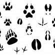 Stock Vector: Animal footprints