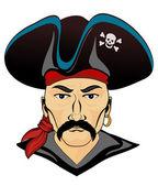 Danger pirate — Stock Vector