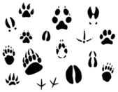 Huellas de animales — Vector de stock