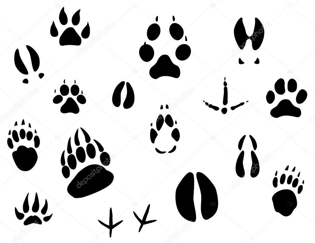 Animal foot prints patterns - photo#8