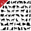 Pets silhouettes # 2 — Stock Vector