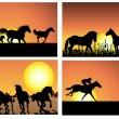 Horse on sunset backgrounds set — Stock Vector