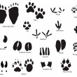 Animal trails with title — Vector de stock