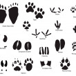 图库矢量图片: Animal trails with title