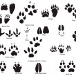 Animal trails with title — Vector de stock #3453365