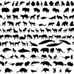 Vector animals — Stock Vector #3598043