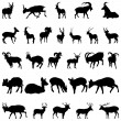 Deer and goats silhouettes set — Stock Vector #3618072