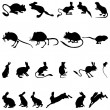 Rodents silhouettes — Stock Vector