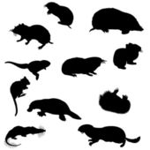 Beavers silhouettes set — Stock Vector