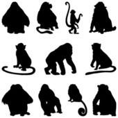 Apes silhouettes set — Stock Vector