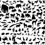 Vector animals — Stock Vector #3657703