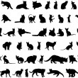 Stock Vector: Cat silhouettes set