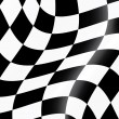 Racing flag — Stockvector #3657738