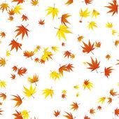 Seamless maple leaves — Stock Vector