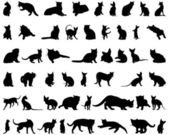 Cat silhouettes set — Stockvector