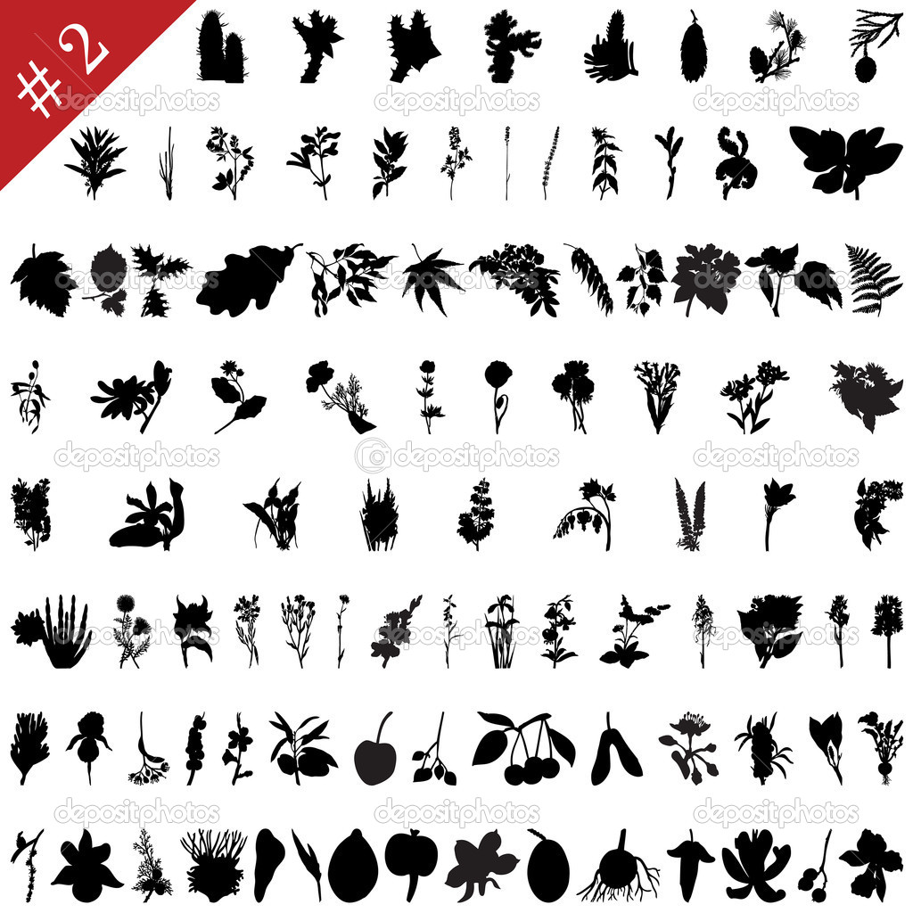 Vector collection of different plants and flowers silhouettes #4  Stock Vector #3657366