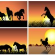 Horse on sunset background — Imagen vectorial