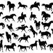 Horses silhouettes - Stock Vector