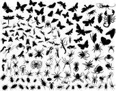 Ziekteoverbrengende insecten — Stockvector