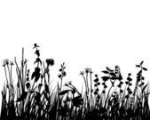 Grass meadow — Stock Vector