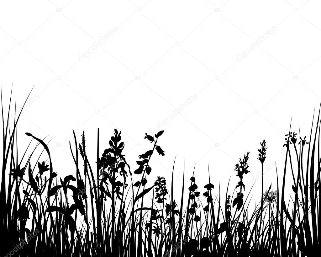 Vector illustration grass background for design usage — Stock Vector #3667618