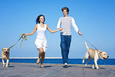 Young Couple running with Dogs — Stock Photo