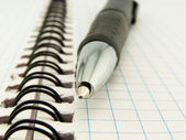 Tükenmez kalem ve defter — Stok fotoğraf