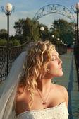 新娘 — 图库照片