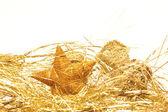 Holiday's design — Stock Photo