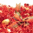 Stock Photo: Red garlands
