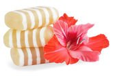 Gliserin sabun — Stok fotoğraf
