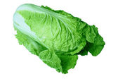 Chinese cabbage — Foto Stock