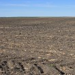 Stock Photo: Fertile, plowed soil of an agricultural field