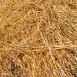 Abstract background made from straw — Stock Photo #3697653