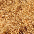 Abstract background made from straw - Stock Photo