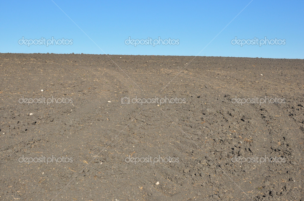 Fertile, plowed soil of an agricultural field  against blue sky  — Stock Photo #3697308