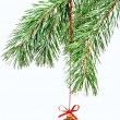 christmas tree decoration — Stock Photo #3841095