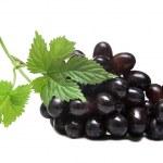 Grapes — Stock Photo #3876270