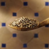 Cumin seed — Stock Photo