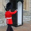 Stock Photo: March of queen's guard