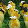 Wedding of chickens on Easter — Stock Photo