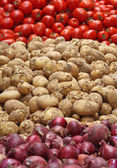 Potato, Tomato & Onion — Stock Photo