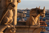 Gargoyles of Notre Dame — Stock Photo
