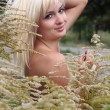 The beautiful girl in a high grass — Stock Photo