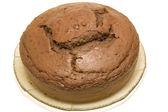 Chocolate sponge cake — Stock Photo