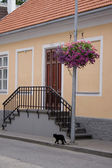 Parnu, Estonia — Stock Photo
