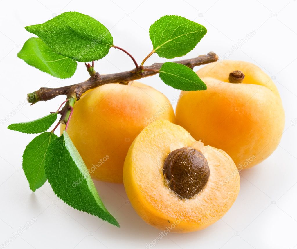 Apricots with leaves on a white background. — Stock Photo #3382157